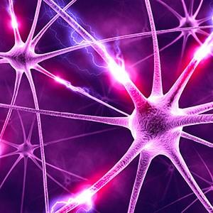 Peripheral Nerve Surgeries